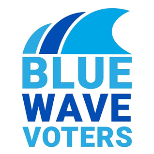 Blue Wave Voters